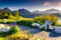 Wunderschöne Naturlandschaft