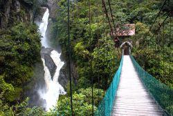 Wildes Ecuador