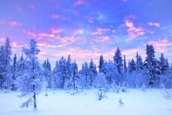 Schneelandschaft in Lappland