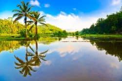 Schöner Fluss auf Sri Lanka