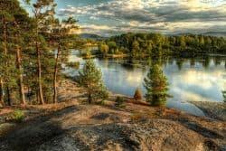 Wildniss in Russland