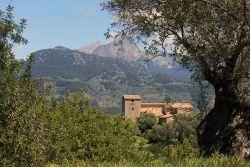 Idyllische Finca auf Mallorca