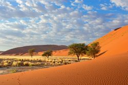Naturlandschaft in Namibia