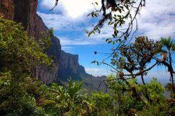 Naturlandschaft in Venezuela