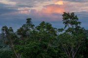 Der Osten Ecuadors