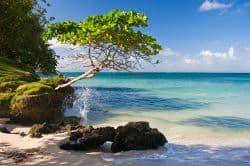 Kleine Bucht in der Dominikanischen Republik