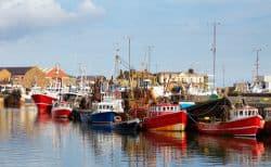 Kleiner Fischerhafen mit vielen Booten