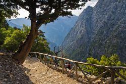 Schöner Wanderweg auf Kreta