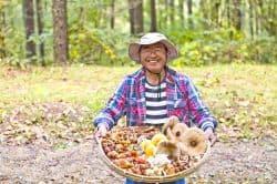 Mann hat Obst im Wald gesammelt