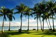 Toller Palmenstrand