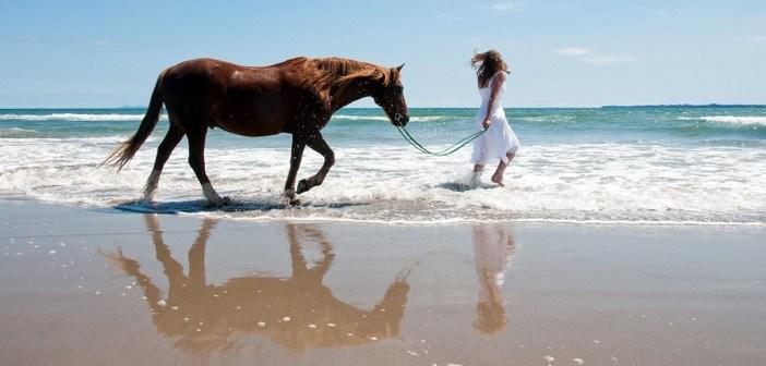 Reiturlaub am Strand