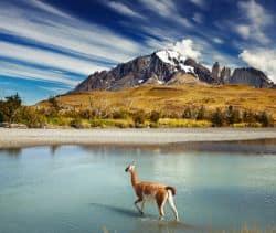 Naturlandschaft in Chile
