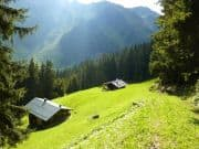 Wunderschöne Naturlandschaft in Österreich