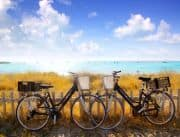 Zwei Fahrräder stehen am Zaun