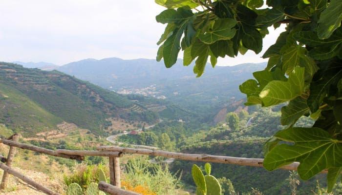 Botanischer Garten auf Kreta