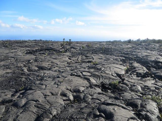 erstarrte Lava auf Hawaii