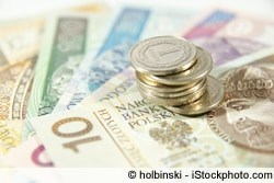 Euro in Zloty tauschen