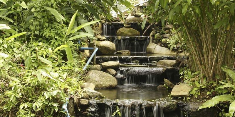 Khao Phra Thaeo Nationalpark