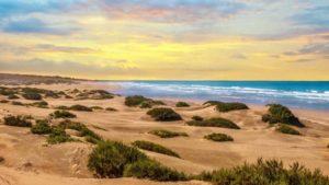 Strand in der Abenddämmerung