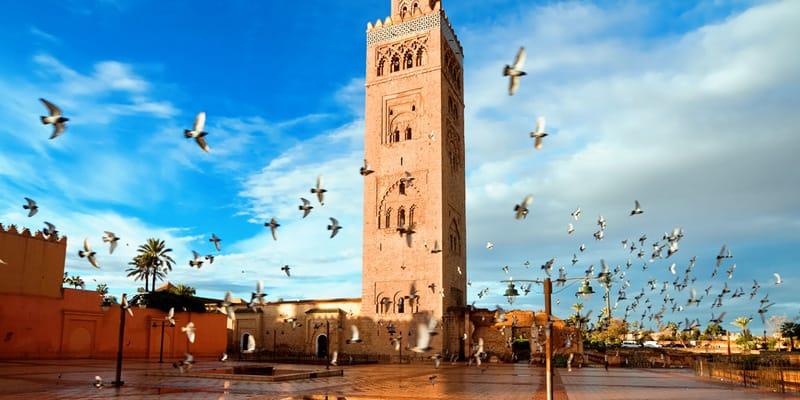 Marokko im Winter