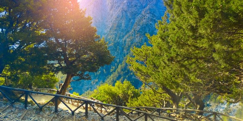 Wanderweg in der Samaria Schlucht