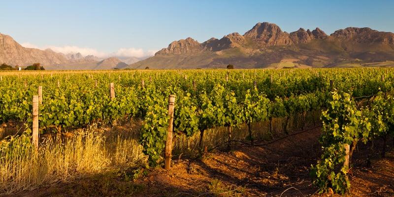 Weinanbaugebiete